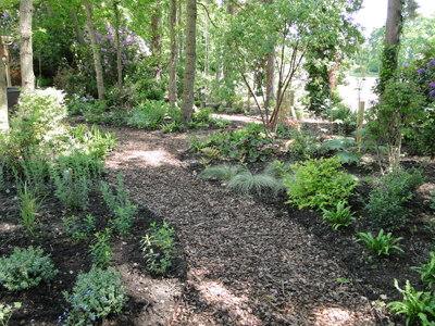 Woodland Small Garden Designs on shade garden designs, small rock garden ideas, private garden designs, meditation garden designs, small greenhouse designs,